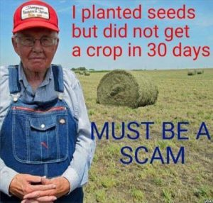 farmer_planted_seeds_no_crop_must_be_scam
